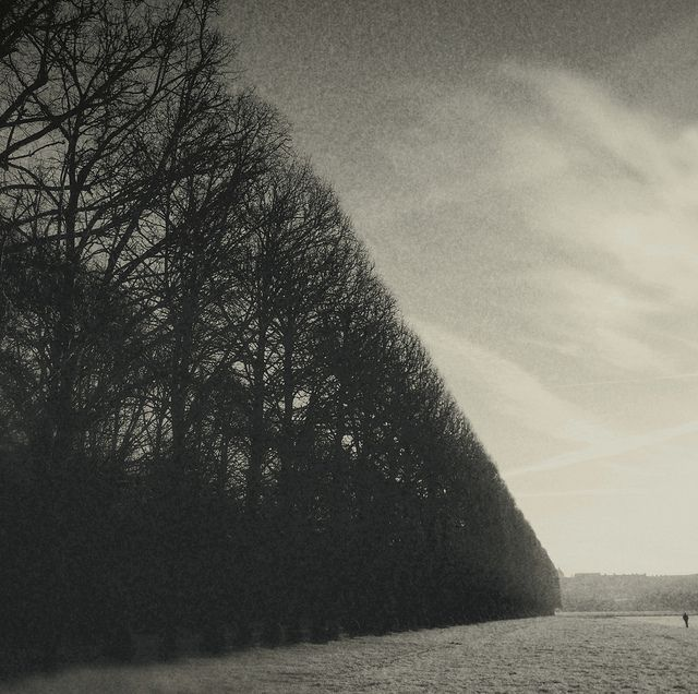 Nettie Edwards: black-and-white iPhoneography