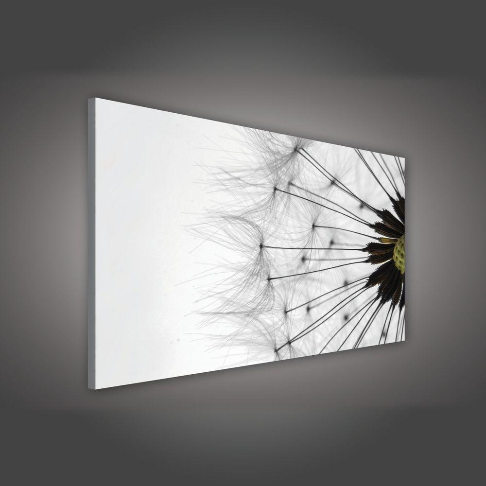 wandbild pusteblume with wandbild pusteblume simple with wandbild pusteblume wandtattoo. Black Bedroom Furniture Sets. Home Design Ideas