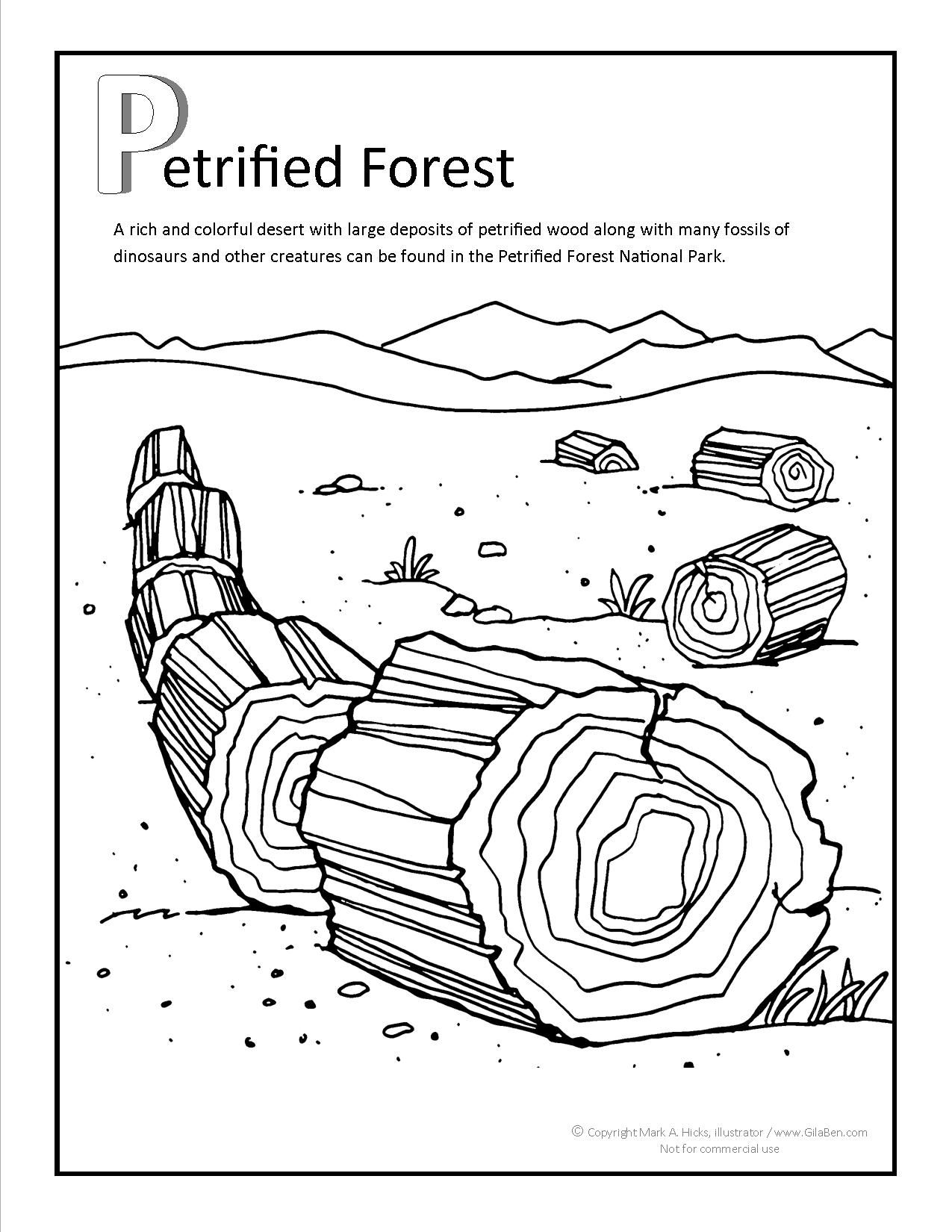 Petrified Forest Coloring page. More fun printable