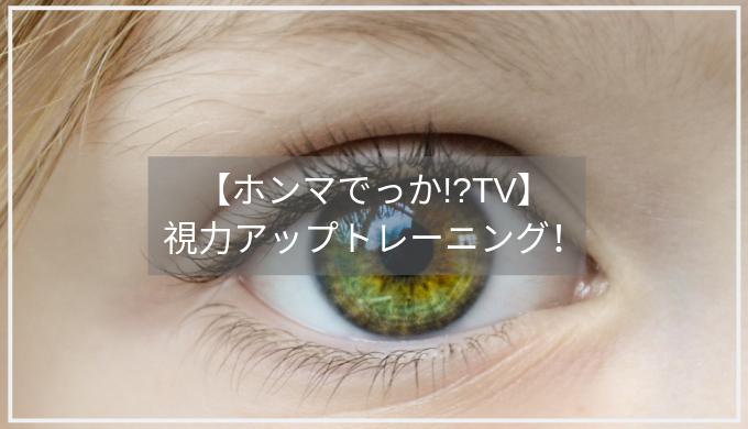 視力 ホンマ でっか