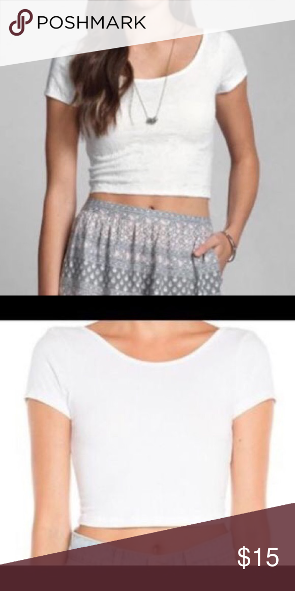 Best Plain White Crop Basic White Crop Top Fitted Nwot 640 x 480