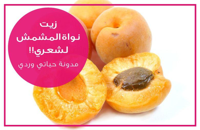 زيت نواة المشمش للشعر المنخفض المسامية من تجربتي Apricot Kernels Apricot Kernel Oil Apricot