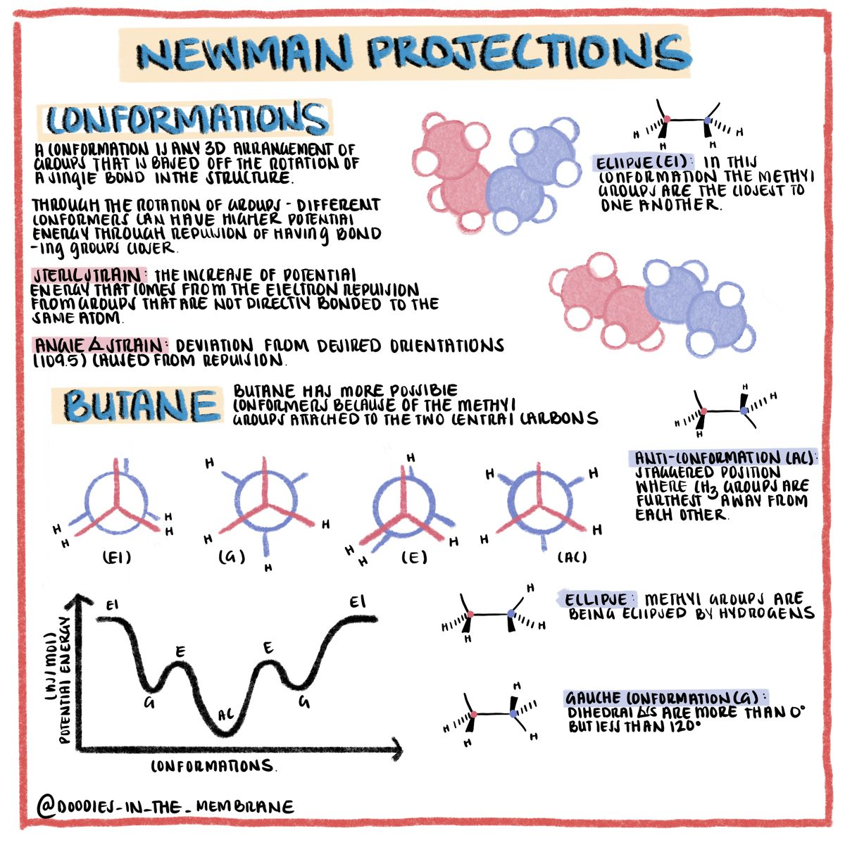 Organic Chemistry Educational Infographics