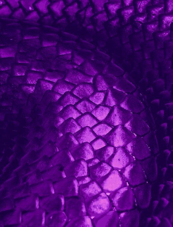 Escamas de dragón morado | Dragon | Pinterest | Escamas y Dragones
