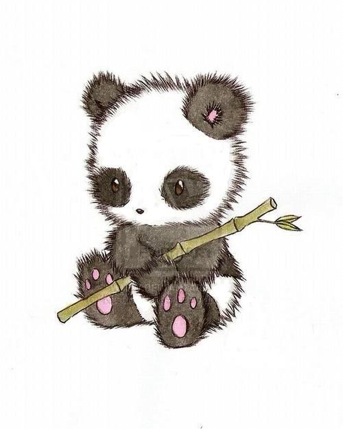 Cute drawing of a baby panda bear