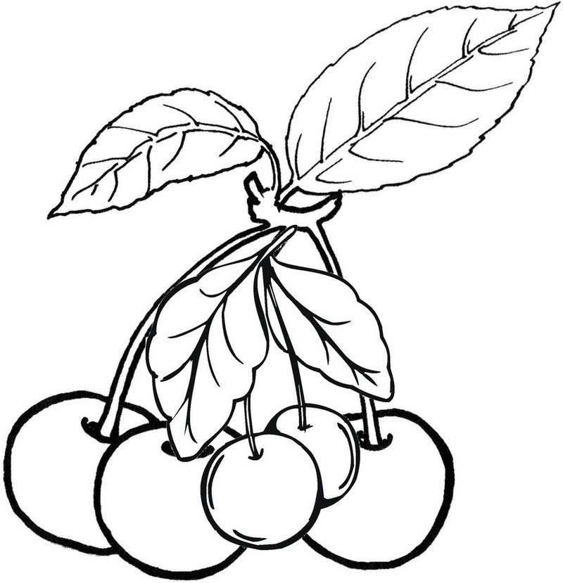 Best Cherries Coloring Page