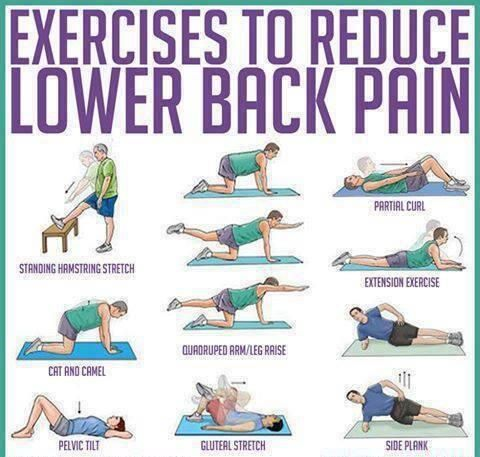 50+ Sup lower back pain ideas in 2021