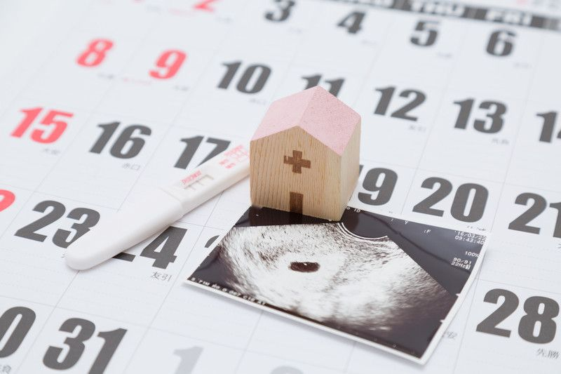 性別 出産予定日 逆算