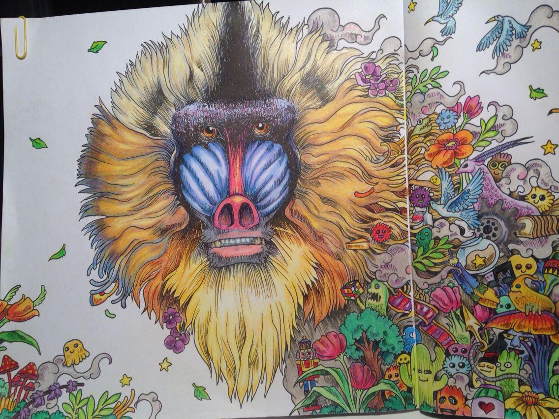 Animorphia Baboon Kerby Rosanes Adult Coloring Polychromos