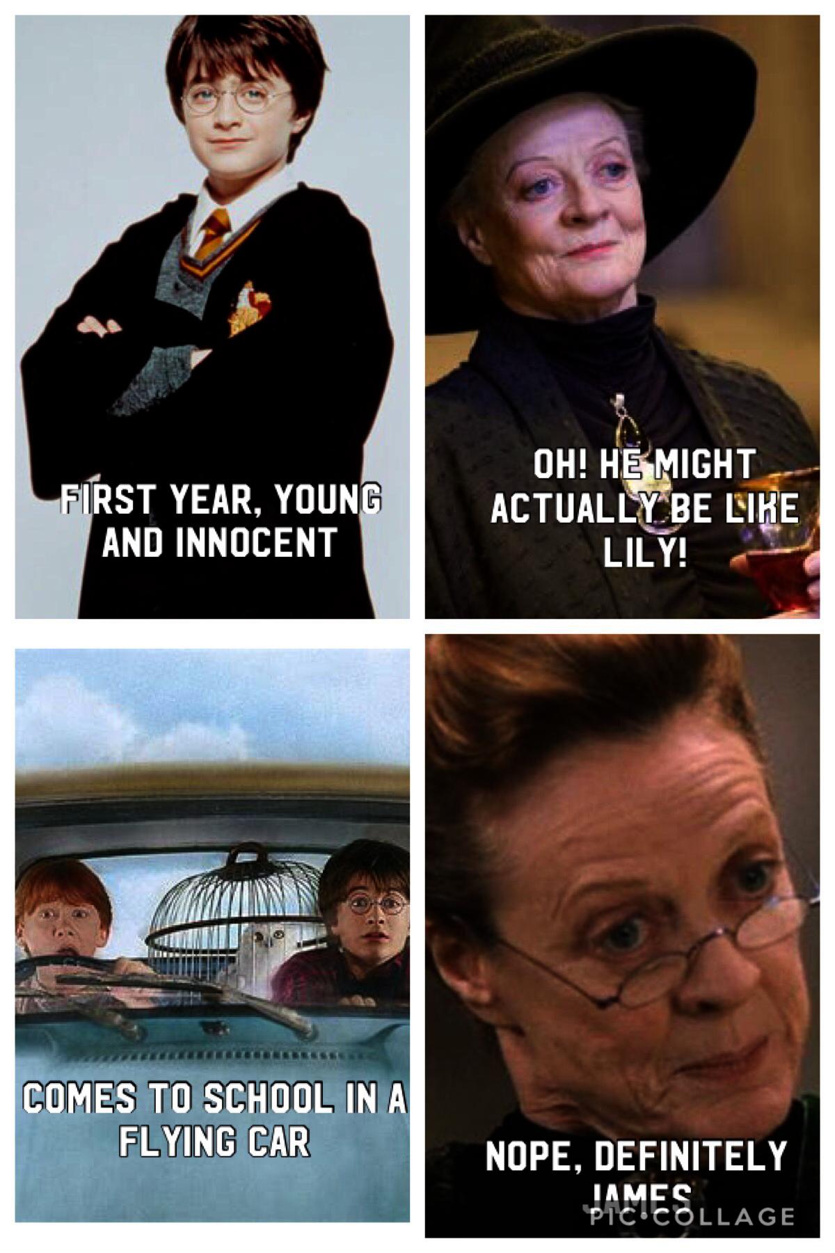 Harry Potter Nerd Memes Without Harry Potter Cast Lockhart Harry Potter World Discount Across Harr Harry Potter Universal Harry Potter Puns Harry Potter Memes