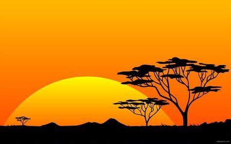Scenery safari sunrise africa