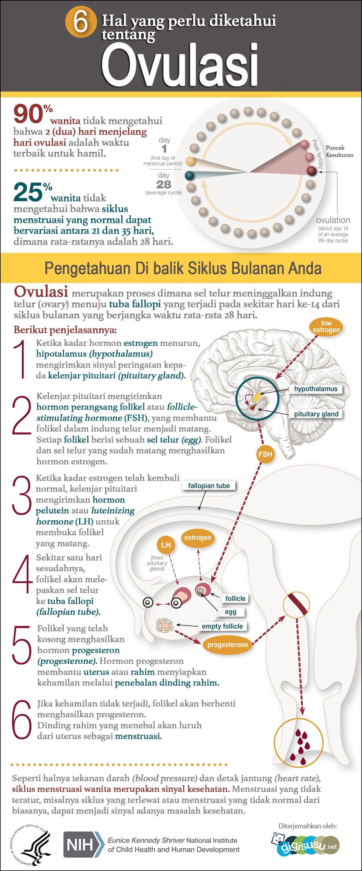Ovulasi merupakan bagian integral dari siklus menstruasi wanita ovulasi merupakan bagian integral dari siklus menstruasi wanita meskipun terjadi pada bagian tengah dari dalam siklus yang dimulai pada hari pertama ccuart Choice Image