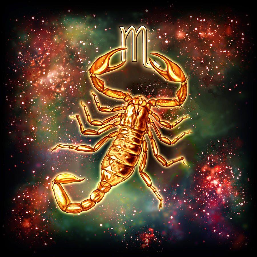 Картинки красивые скорпионы