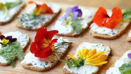 Guía de flores comestibles: para animarse a probar