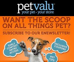 Join Pet Value Rewards Pets Http Free Ca Rewards Join Pet Valu Pets Contest Rewards