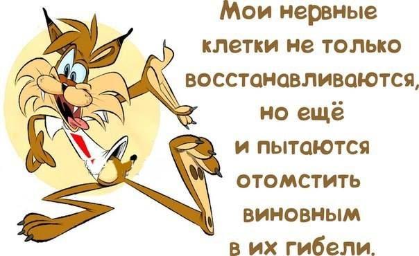 магілеўшчыне, открытка нервы не восстанавливаются стартом работы скачайте