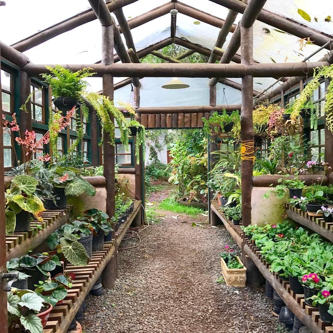 Republicadojardim On Instagram Greenhouse Next Project For Republicadojardim S Nursery Greenhouse Instagram In 2020 Hinterhof Gewachshaus Hintergarten Bauerngarten