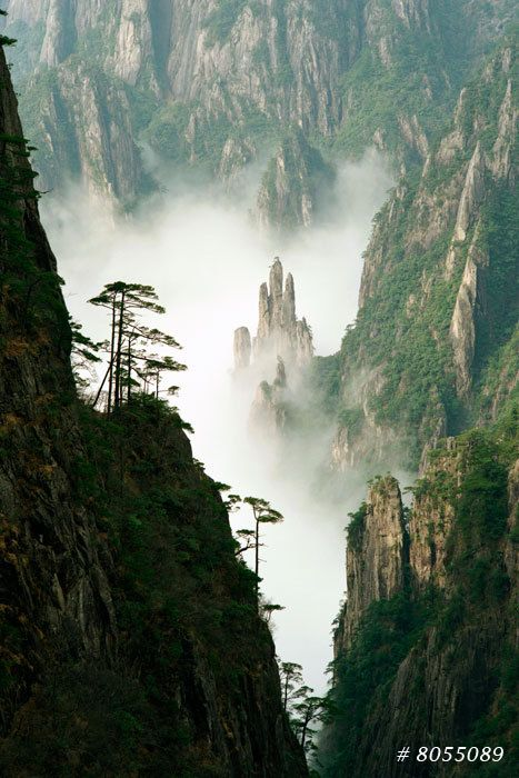 Nature Landscape Fine Art Photography Buddha S Palm Yellow Mountain National Park China In 2020 Landscape Nature Photography Art Photography