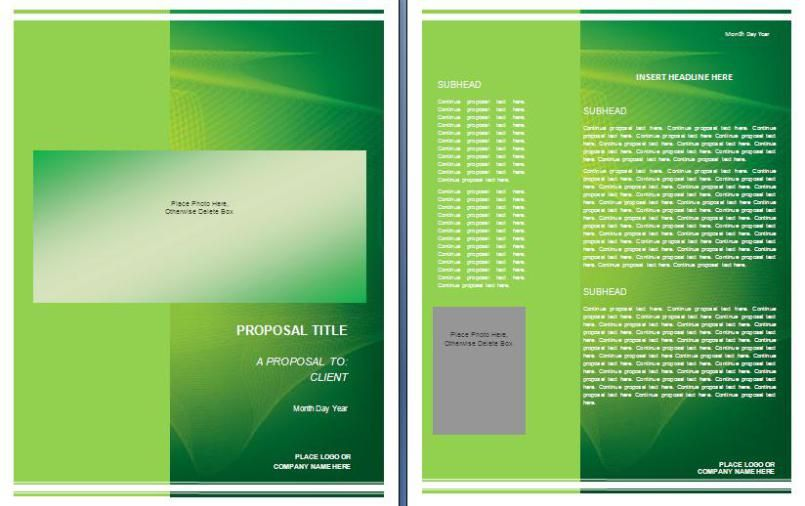 Graphic Design Proposal Template  Proposal    Proposal