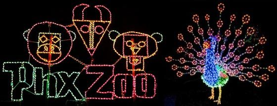 Experience The Phoenix Zoo Zoo Lights When Family Visits  - Phoenix Zoo Christmas Lights