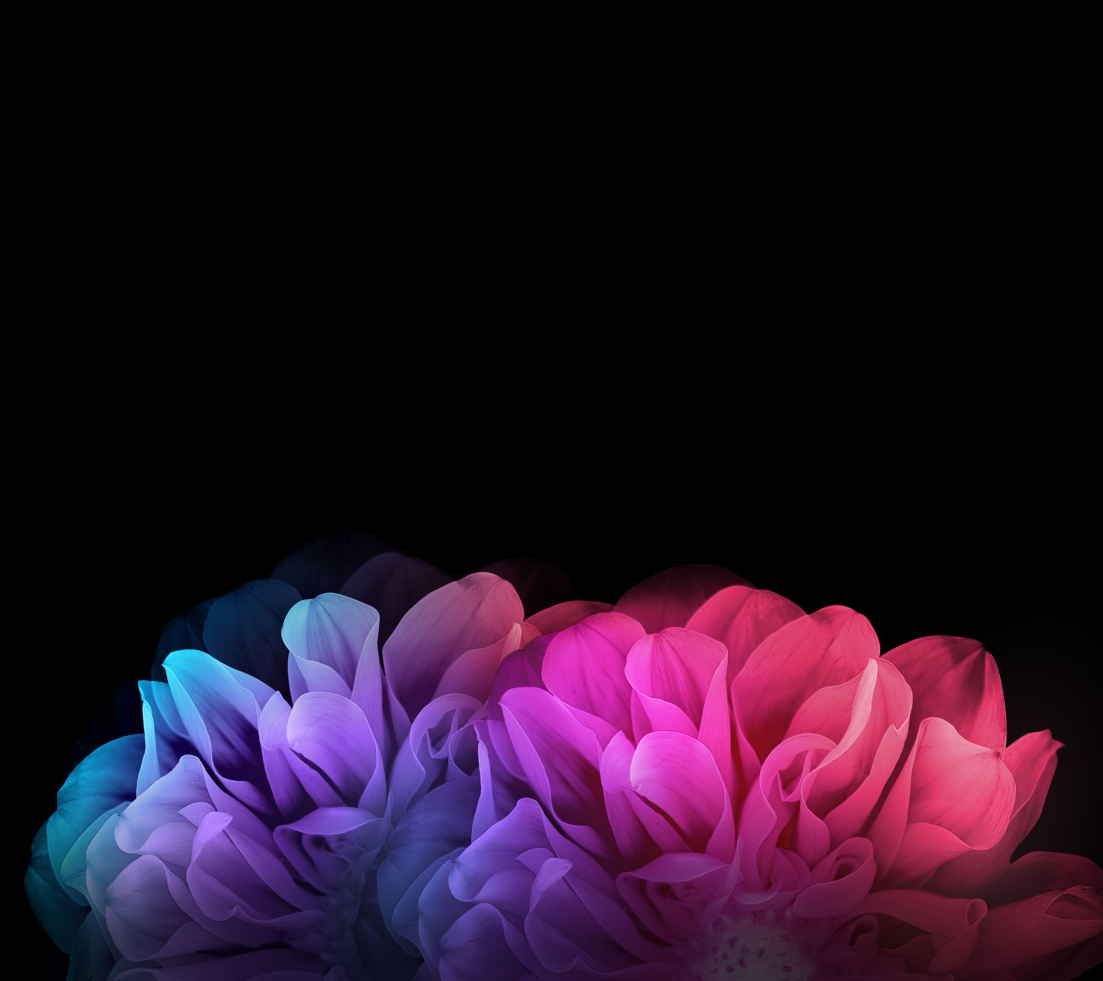 Lg Phone Wallpapers 46 Wallpapers Hd Wallpapers Cute Mobile Wallpapers Flowers Dark Background Cellphone Wallpaper