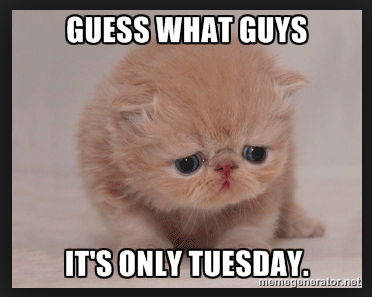 6ba29bb0a549258926cb77a9e9d50133 it's only tuesday meme morning coffee deals, giggles, news