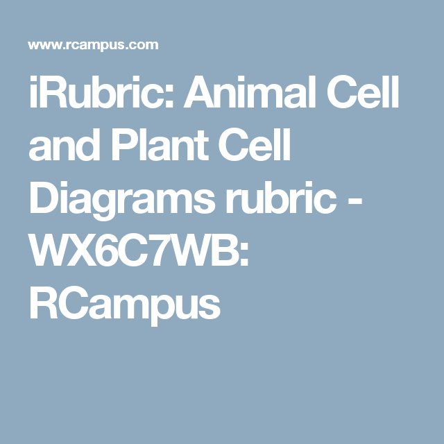Irubric animal cell and plant cell diagrams rubric wx6c7wb irubric animal cell and plant cell diagrams rubric wx6c7wb rcampus ccuart Choice Image