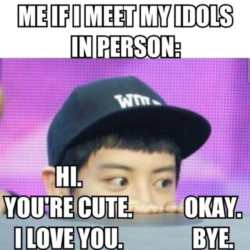I Would End Up Freaking Out And Passing Out If I Ever Met My Idols In Person Funny Kpop Memes Exo Funny Kpop Funny