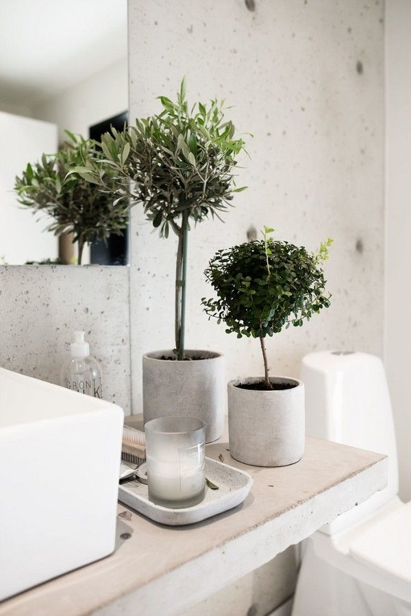 Plants For Bathrooms Topiary Small Plants For Bathroom Ideas Bathroom Decor Ideas Bathroom Design Small Green Decor Bathroom Plants