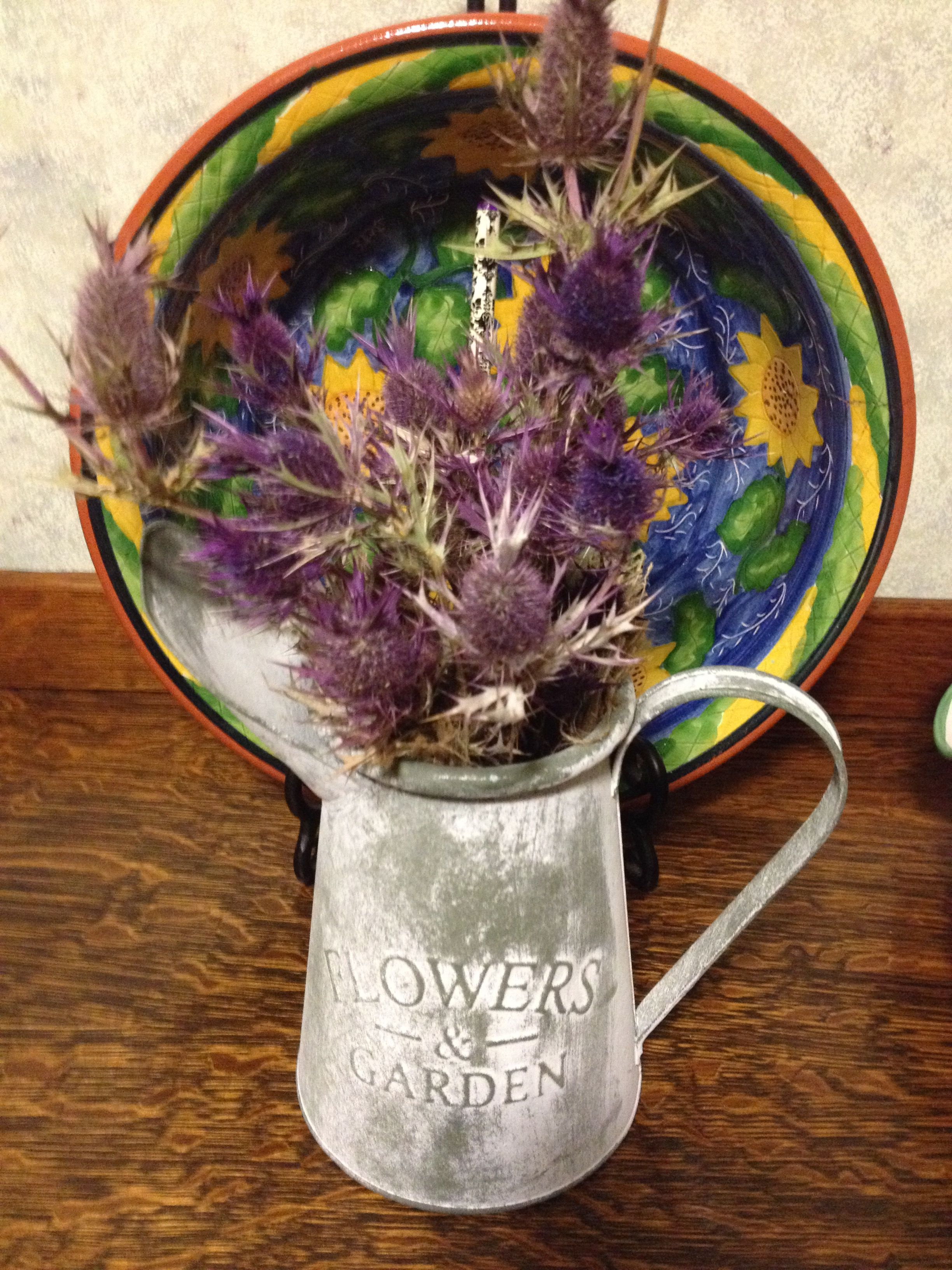 Thistles from field and pitcher from Sterling Scotland 10/14