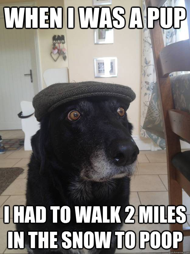 When I was a pup I had to walk 2 miles in the snow to poop  Old Timer Dog