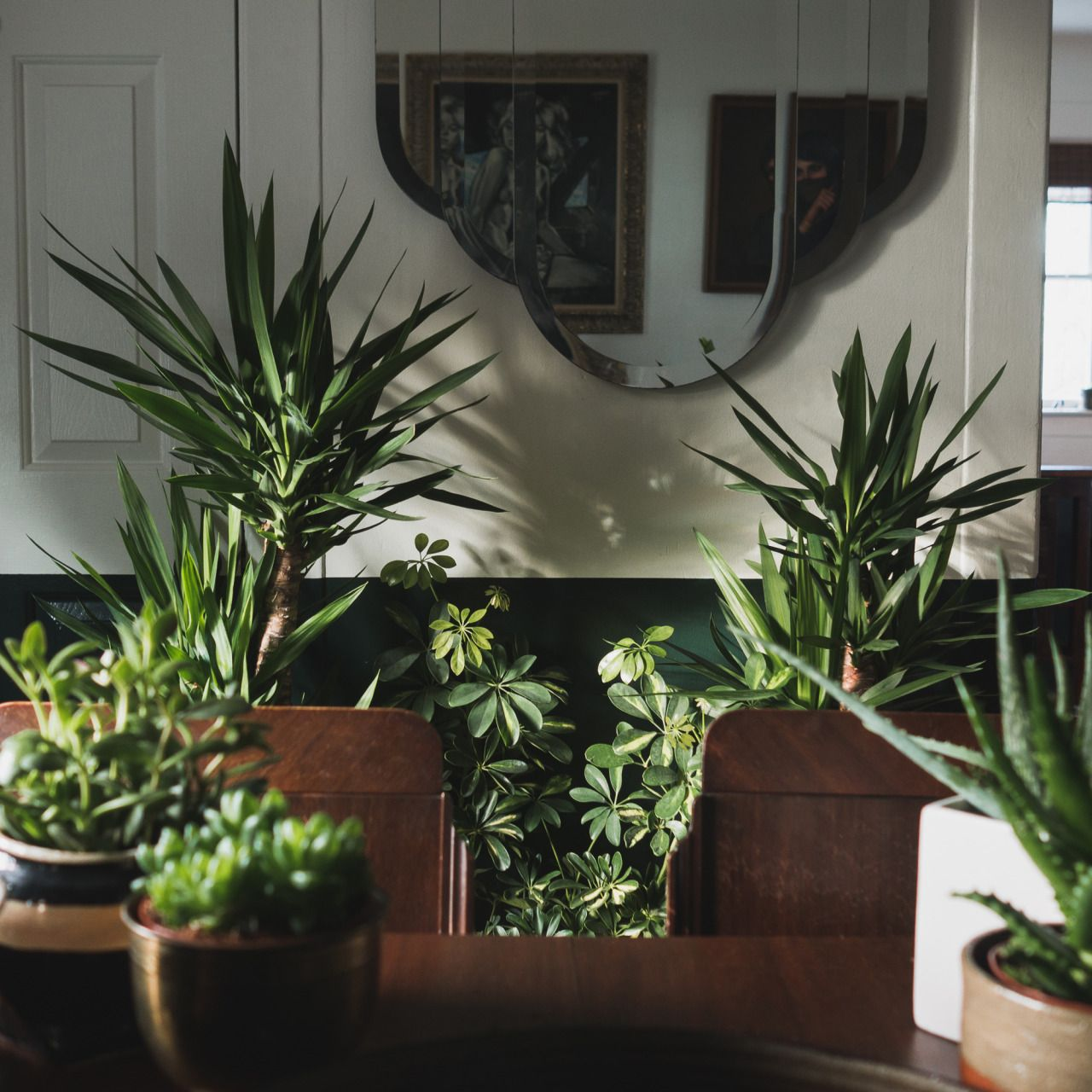 Plants rule everything around me. (With images) Plants