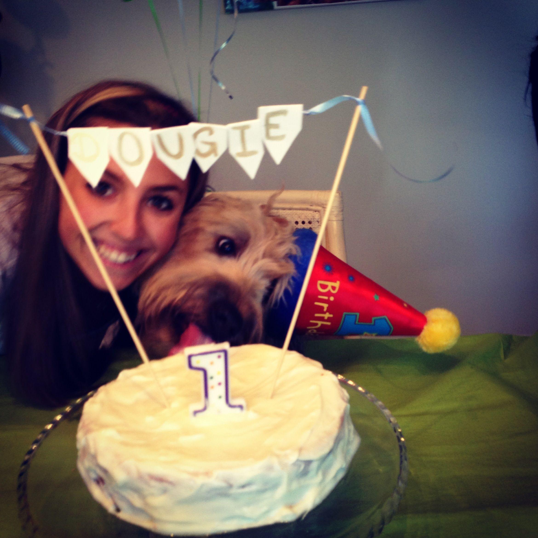 Happy 1st birthday dougie wheaten terrier love happy