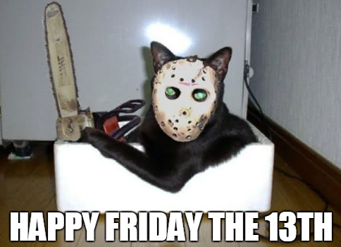 Happy Friday The 13th Cat D Friday The 13th Funny Friday Funny Pictures Happy Friday The 13th