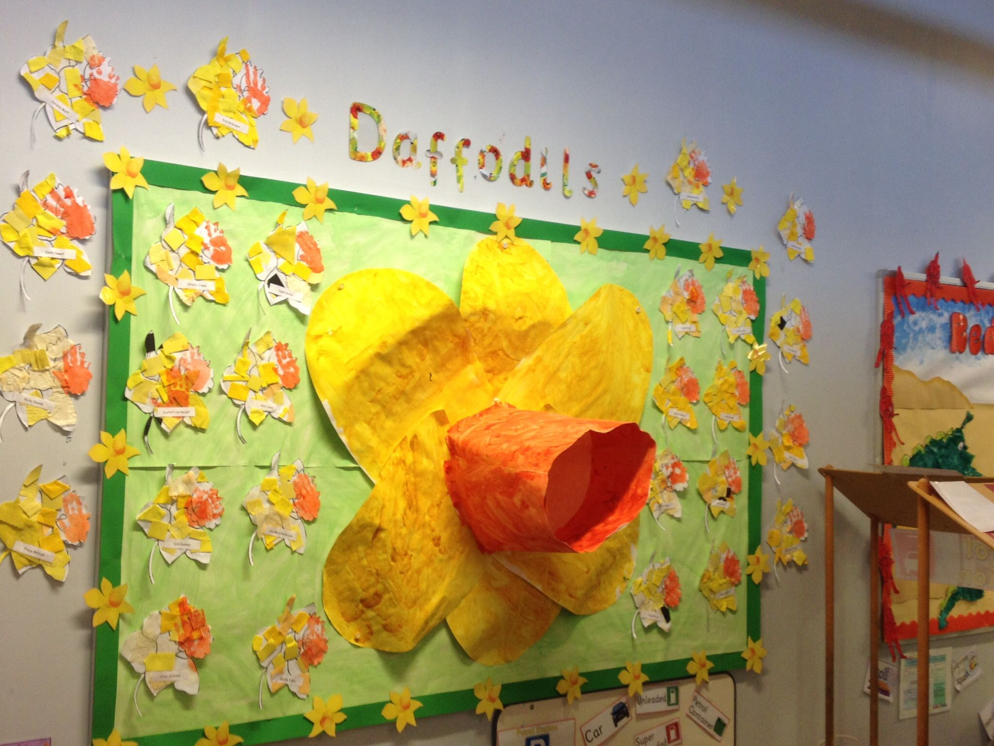 Giant daffodil that somehow managed to stay on the wall!\