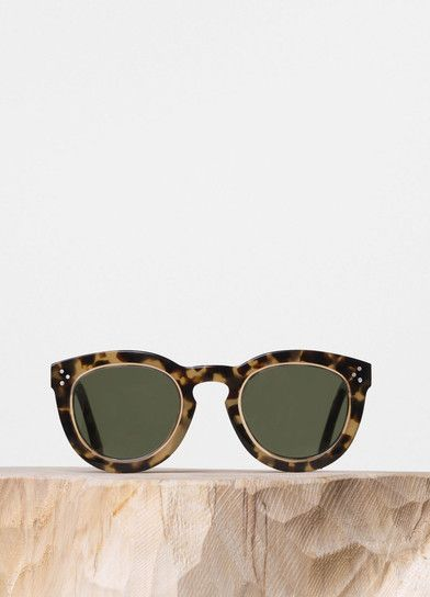 9b0914893f8f Agnes Sunglasses in Havana Honey and Transparent Champagne Acetate with  Green Lenses - Céline