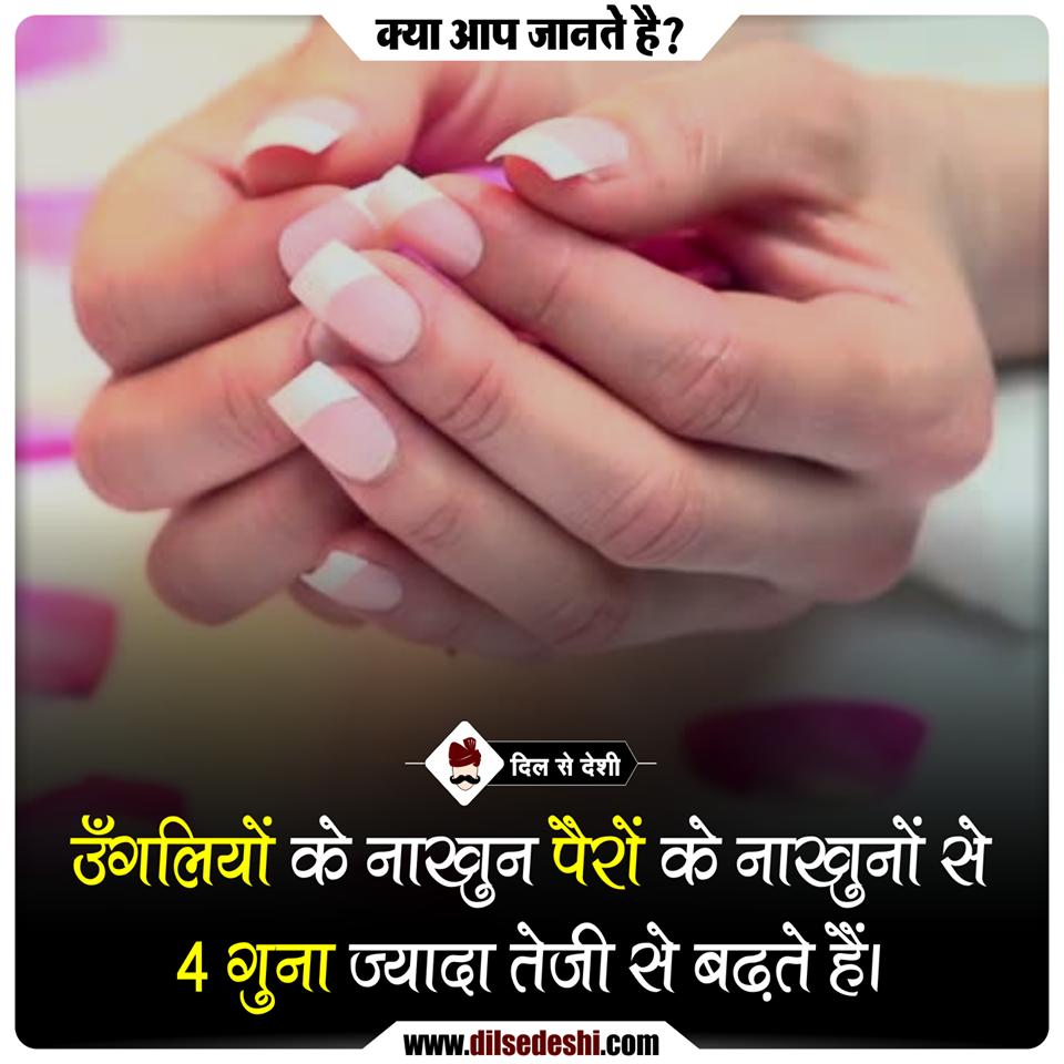 दीपावली शायरी | Status quotes, Hindi quotes, Diwali wishes ...