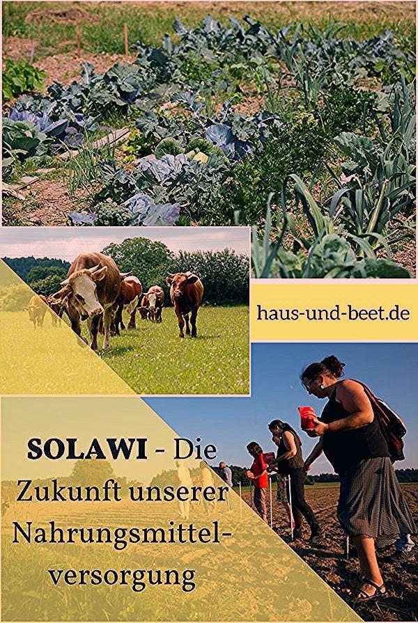 Photo of SOLAWI – Die Zukunft unserer Nahrungsmittelversorgung – Haus und Beet