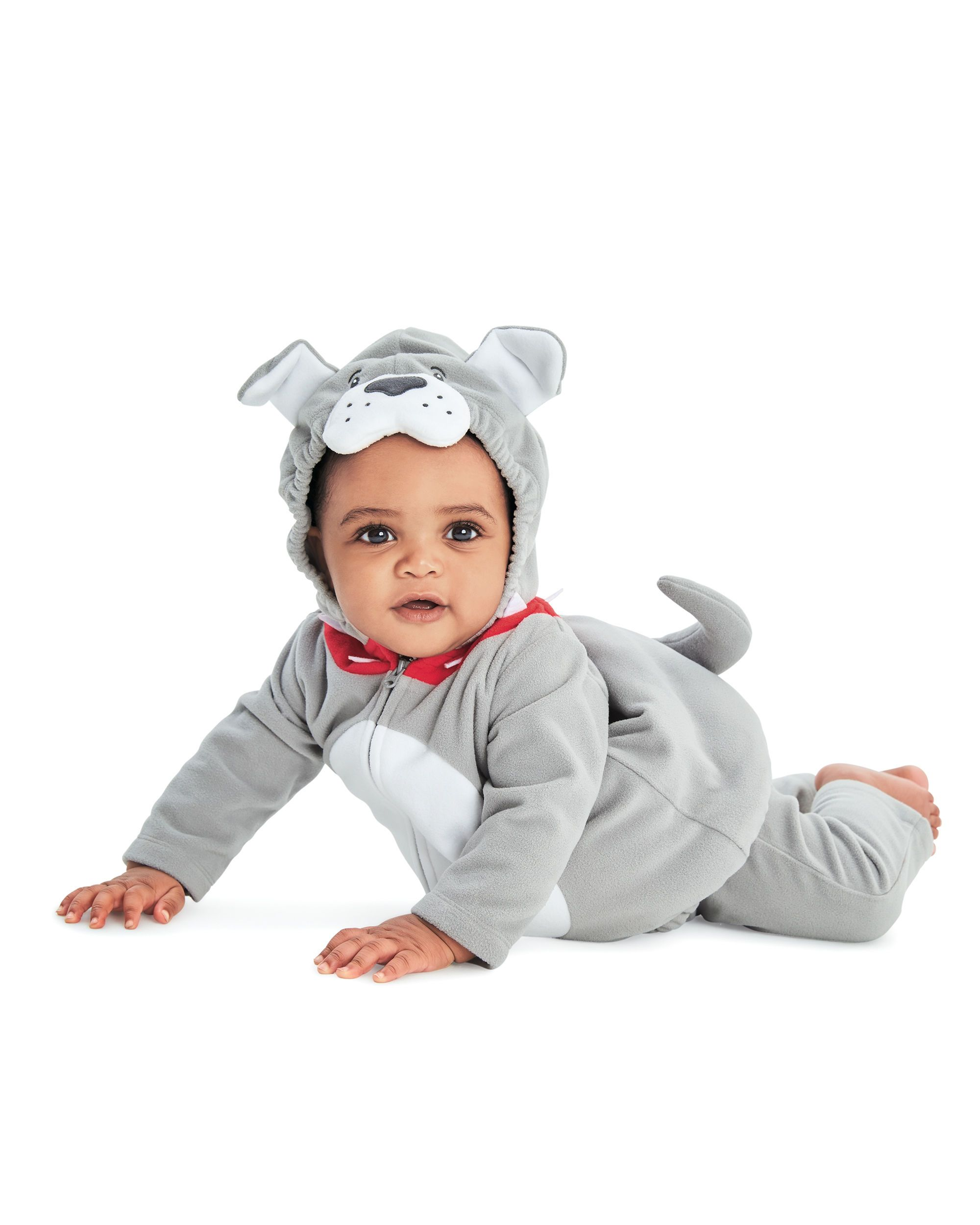 Little Bulldog Halloween Costume