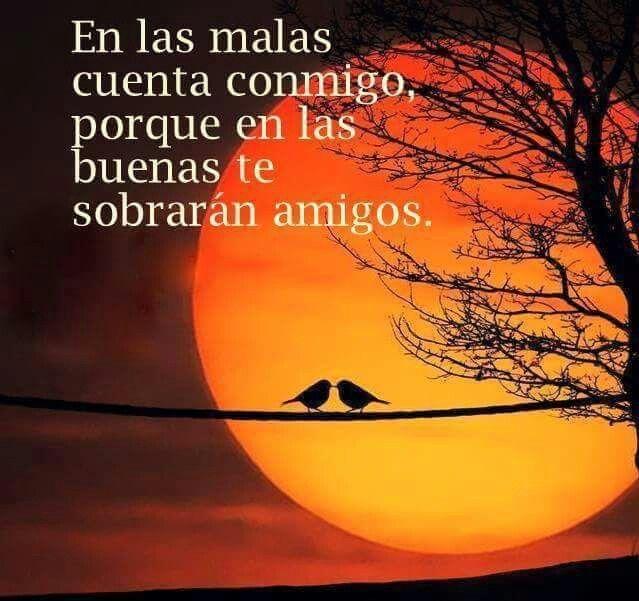 "===Un Rincón para ""Luna""...=== - Página 4 6baafbebdd963b80fcb1f8a0317d386b"
