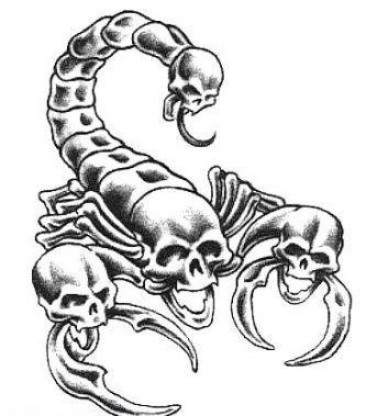 Skulls Scorpion Tattoo Design Scorpion Tattoo Armband Tattoo Design Skull Tattoo Design