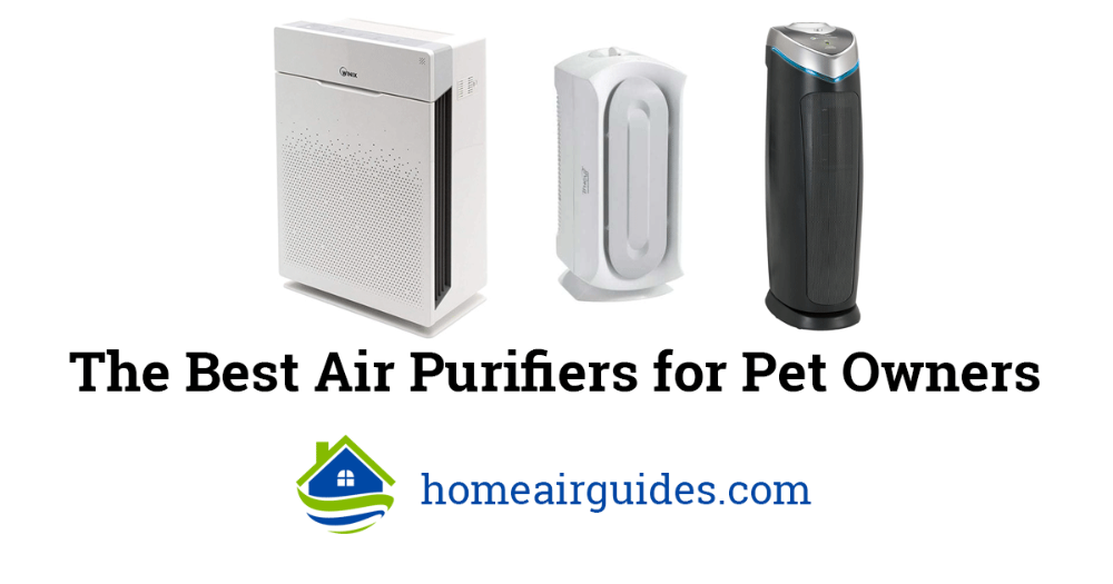 Best Air Purifier for Pets (Allergies, Dander, Hair