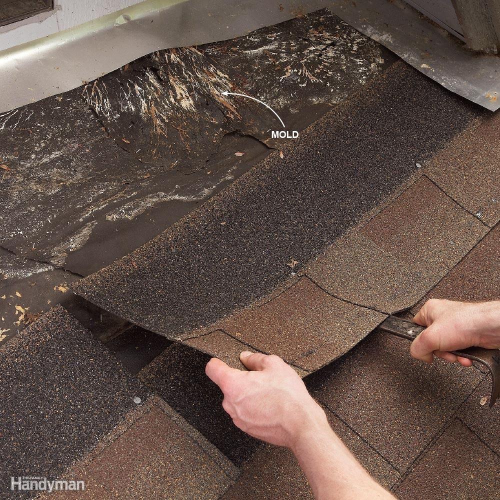 Luxury Roof Leaking Around Vent