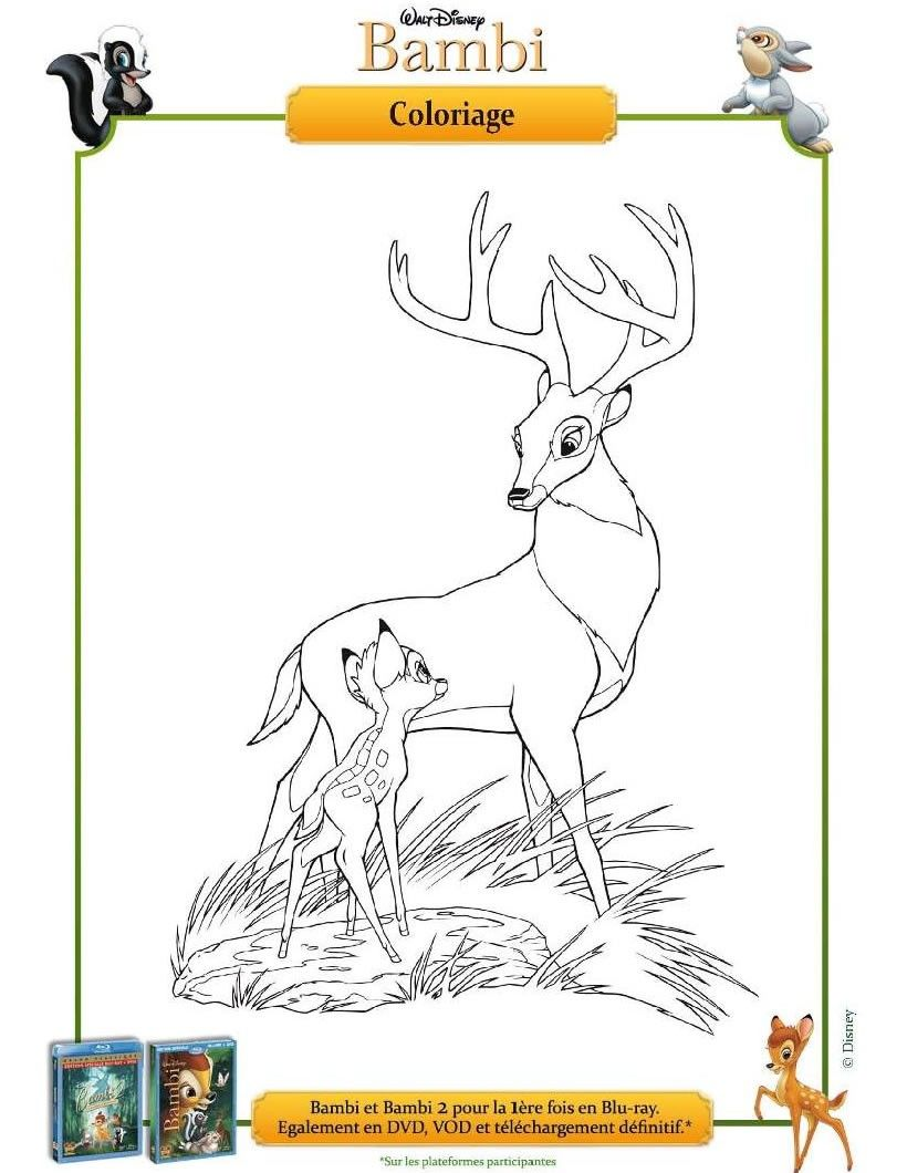 Un joli coloriage sur Bambi. Viens colorier Bambi et son papa de