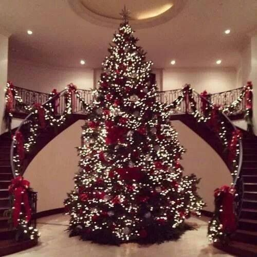 The most amazing Christmas tree