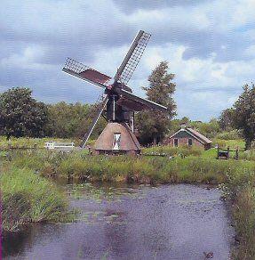Mill 'De Wiecher' at 'De Weerribben'