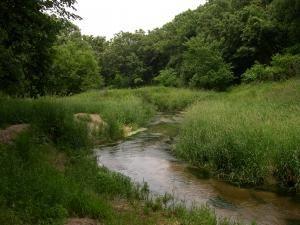 Verdigree Creek