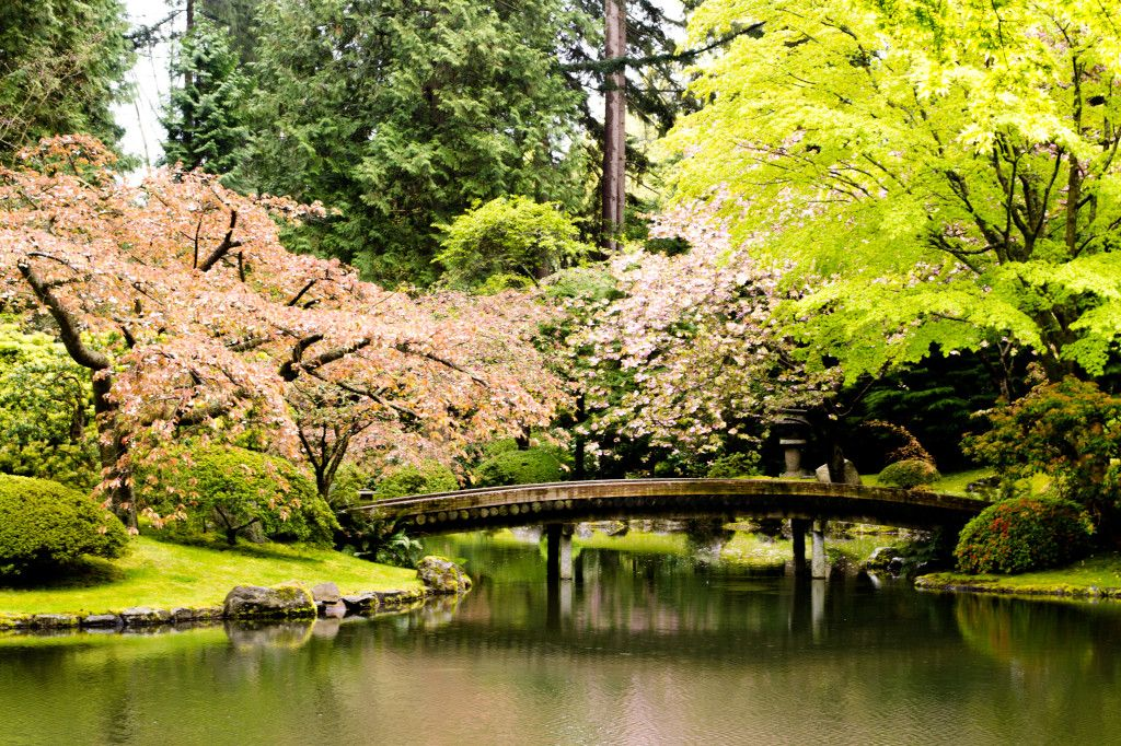 Nitobe Memorial Garden A Traditional Japanese Tea And Stroll Garden Located At The University ...