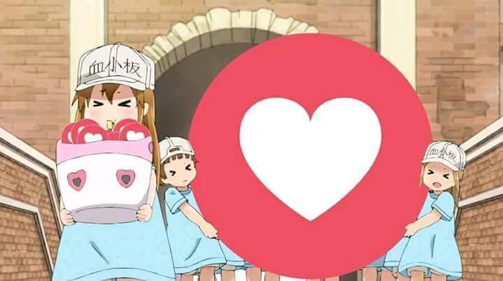 Pin de Asuna Yuuki em Memes Anime engraçado, Otaku anime