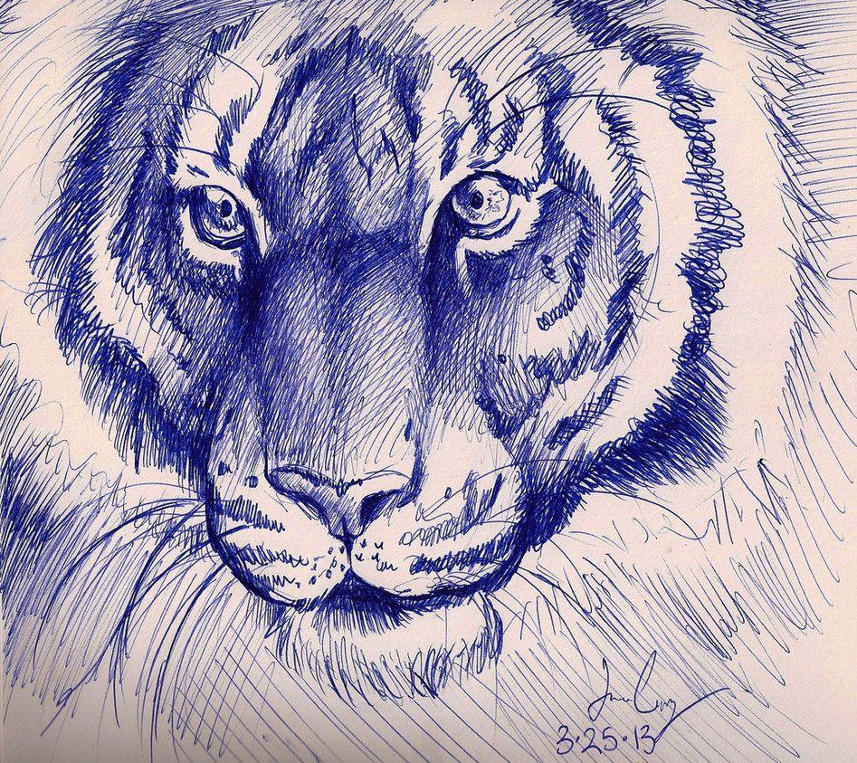 Tiger Pen Sketch By Sketcher216 Pen Sketch Ballpoint Pen Art Ballpoint Pen Drawing